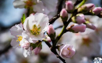 Frühlingsferien!